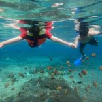 Harga Snorkeling Di Nusa Penida Terbaru