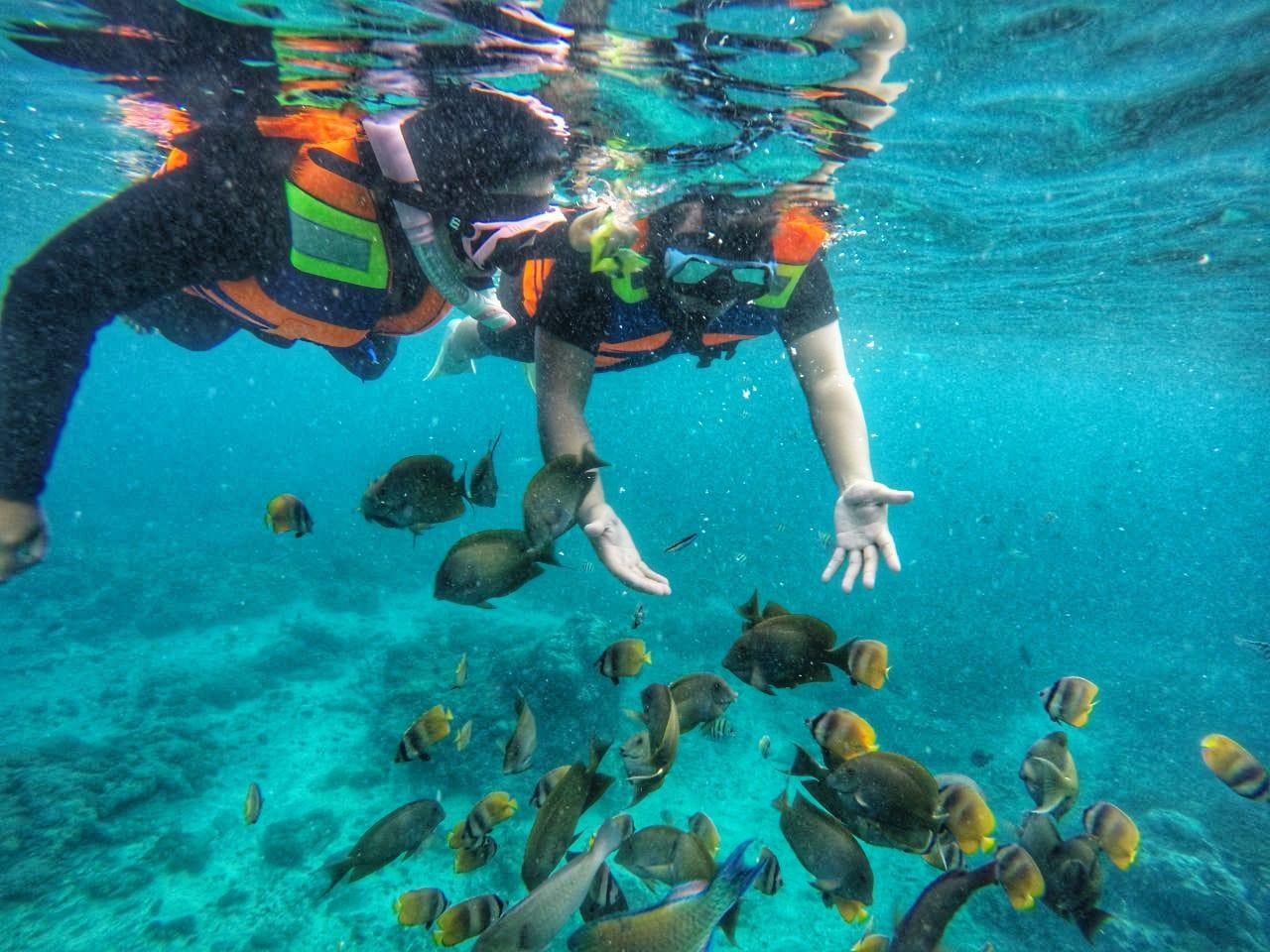 Paket Tour Nusa Penida & Tour Snorkeling Murah