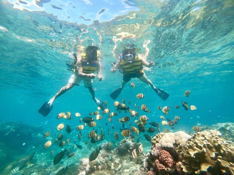 Paket Halfday Snorkeling Nusa Penida Murah