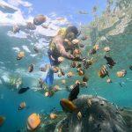 Tour Nusa Penida Bali Murah Bersama MS Nusa Penida